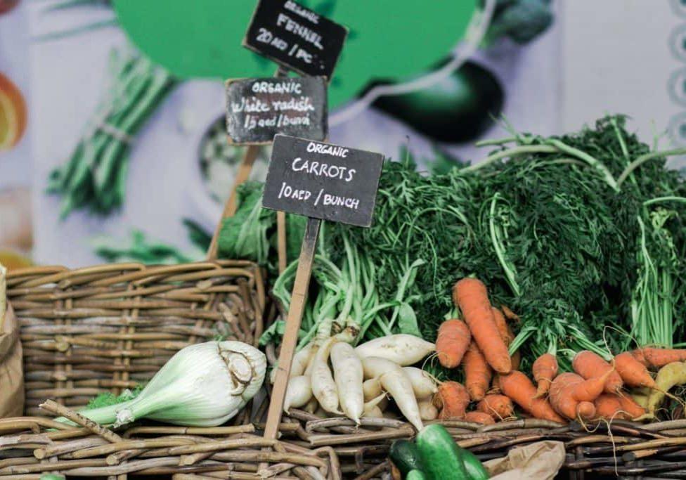4. fresh veg. keit-trysh-295253 (1)